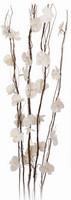 Vrbové větvičky s květy svítící
